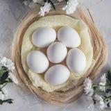 Пасхальные яйца в цветках гнезда и весны белых на белой предпосылке Взгляд сверху Стоковые Изображения RF
