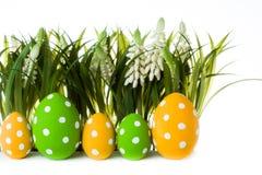пасхальные яйца засевают травой спрятано стоковые изображения rf