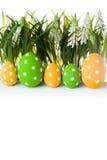 пасхальные яйца засевают травой спрятано стоковая фотография rf