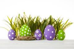 пасхальные яйца засевают травой спрятано стоковое изображение