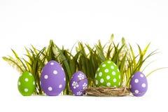пасхальные яйца засевают травой спрятано стоковое изображение rf