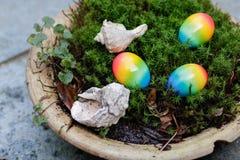 Пасхальные яйца и раковины в мхе Стоковые Фотографии RF