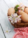 Пасхальные яйца и цветение яблока Стоковые Фото