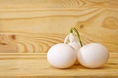 Пасхальные яйца и snowdrops. Стоковые Фотографии RF