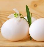 Пасхальные яйца и snowdrops. Стоковое Изображение RF