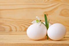 Пасхальные яйца и snowdrops. Стоковая Фотография