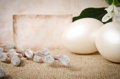 Пасхальные яйца и snowdrops Стоковое Фото
