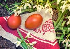 2 пасхальные яйца и snowdrops Стоковое Фото