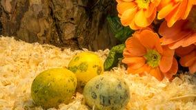 Пасхальные яйца на деревянных shavings с красным цветком Стоковые Фотографии RF