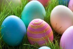Пасхальные яйца на зеленой траве которые красочны Стоковое Фото
