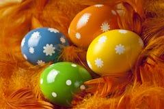 Пасхальные яйца на предпосылке пера Стоковая Фотография RF