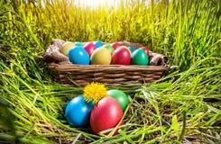 Пасхальные яйца на траве стоковые фото