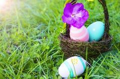 Пасхальные яйца пряча в траве, горизонтальной Стоковые Изображения RF