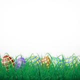 Пасхальные яйца с сеткой в траве на белой сияющей предпосылке Стоковая Фотография RF