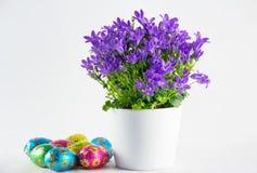 Пасхальные яйца с цветками весны Стоковая Фотография RF