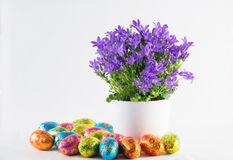 Пасхальные яйца с цветками весны Стоковая Фотография