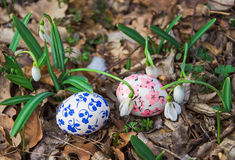 Пасхальные яйца с snowdrops Стоковые Фотографии RF
