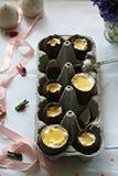 Пасхальные яйца шоколада Стоковые Фотографии RF