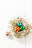 Пасхальные яйца Colourfull в гнезде Стоковая Фотография