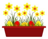 пасхальные яйца daffodils Стоковые Изображения RF