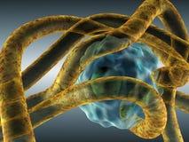 патоген нападения Стоковые Изображения RF