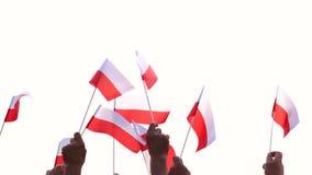 Патриотические польские люди держа флаги outdoors акции видеоматериалы