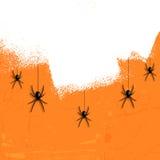 Пауки хеллоуина Grunge Стоковые Изображения RF