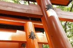 Паук в torii Стоковое Изображение RF