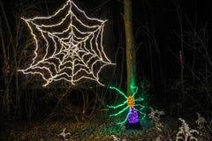 Паук и выставка света рождества сети Стоковое Изображение