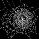 Паутина белизна на черной предпосылке вектор Стоковые Фото