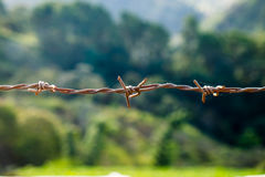 Паутина ржавчины катушки провода повешенная в ферме Стоковая Фотография RF