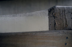 паутина Стоковое Изображение