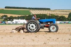 Пахать трактора старого fordson супер главный Стоковые Изображения
