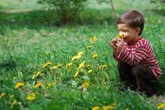 пахнуть цветка одуванчика мальчика Стоковые Фото