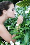 пахнуть цветков Стоковое Изображение RF