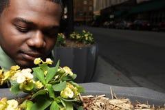 пахнуть цветков Стоковые Фотографии RF