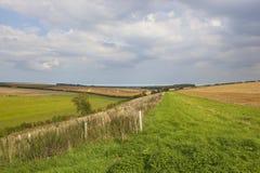 Пахотноспособные поля и плантация Стоковые Фотографии RF