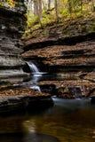 Пахта падает парк штата - водопад осени - Ithaca, Нью-Йорк стоковые изображения