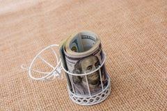 Пачка банкноты доллара США в клетке птиц Стоковые Изображения RF