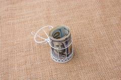 Пачка банкноты доллара США в клетке птиц Стоковая Фотография RF