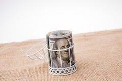 Пачка банкноты доллара США в клетке птиц Стоковые Изображения