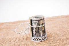 Пачка банкноты доллара США в клетке птиц Стоковое Фото