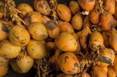 Пачка зеленых кокосов для продажи Предпосылка свежих съестных кокосов на рынке плодоовощ Стоковое Изображение RF