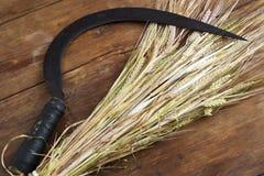 Пачка и серп пшеницы стоковые фото