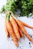 Пачка морковей Стоковая Фотография RF