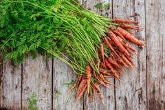 Пачка пакостной моркови на деревянной предпосылке планок Стоковые Изображения