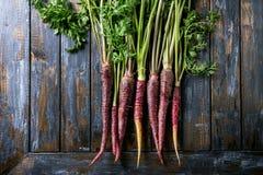Пачка фиолетовой моркови стоковое фото