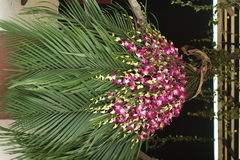 Пачка цветка стоковая фотография rf