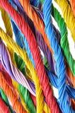 Пачки кабеля сети Стоковые Фото