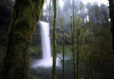 падает Орегон на юг Стоковое фото RF